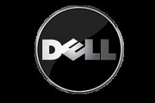 Antalya Dell Servisi